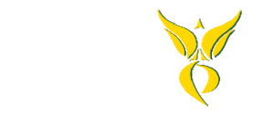 Paragon Credit Repair & Industry Services